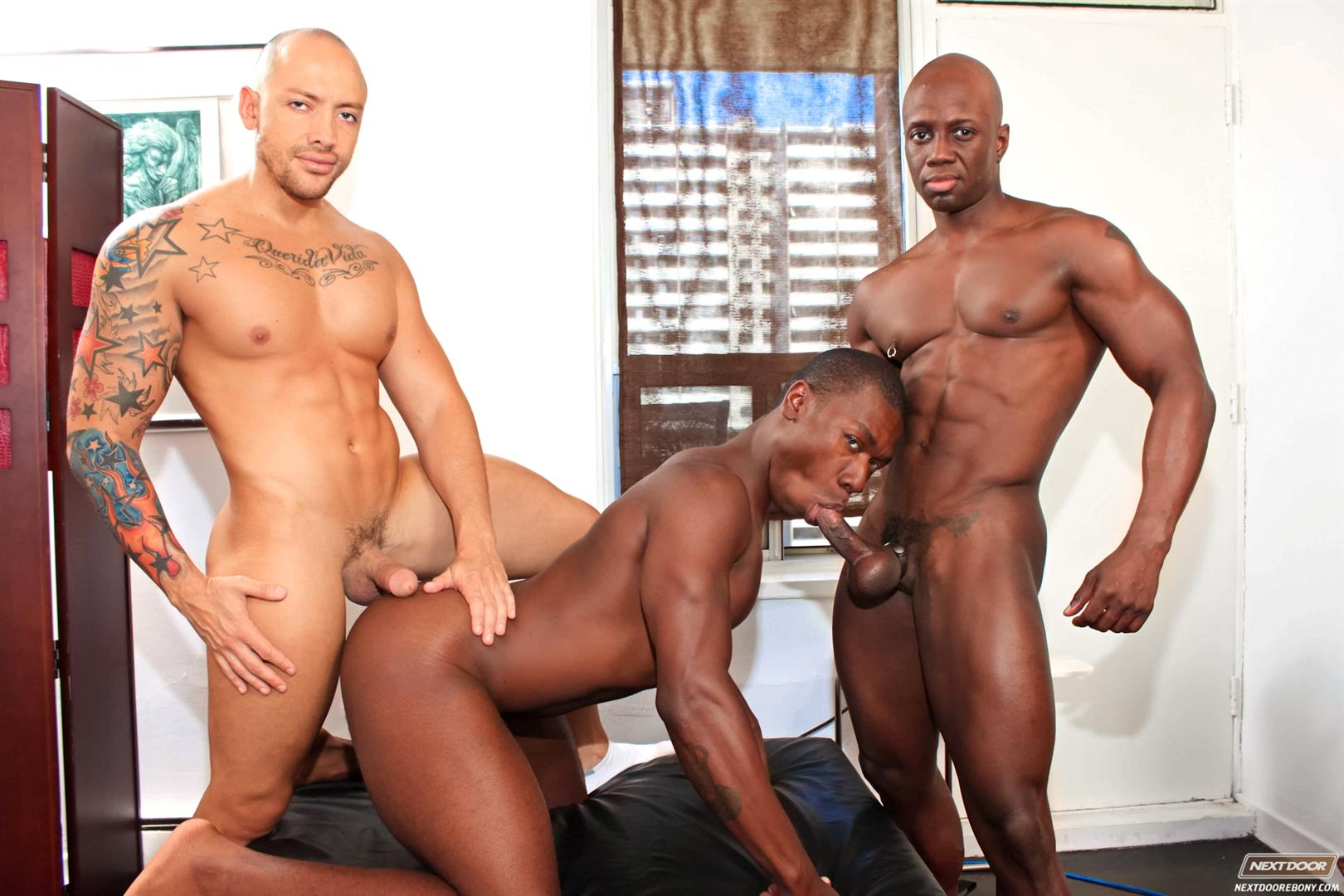 ebony porn gay Ebony porn - meaning and definition of word - MinuPorno.